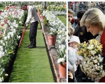 В Лондон създадоха най-красивата градина в памет на ...