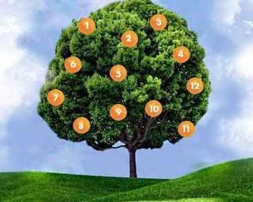 Тест: Вижте какво ви чака в бъдеще според дървото на ...