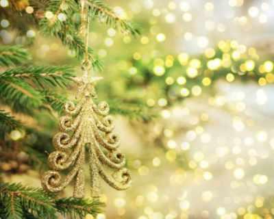 Как да запазите свежа истинската елха?
