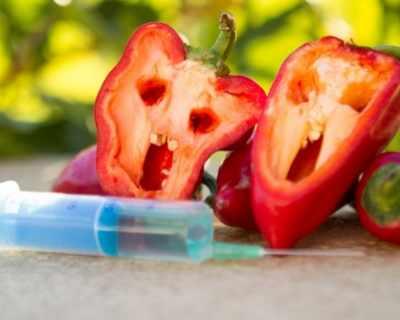 Най-разпространените митове за ГМО храните