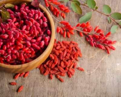 Странични ефекти на плода годжи бери