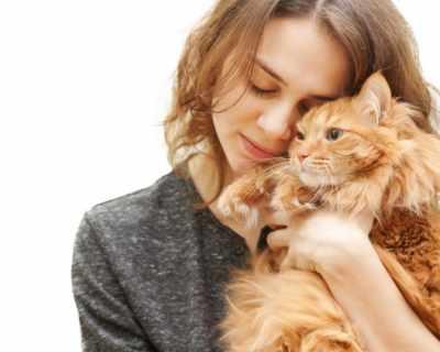 """Откриха перфектната работа - """"гушкач"""" на котки"""