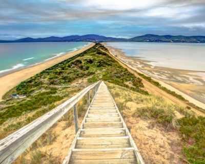 """По следите на """"Лъв: Стъпки към дома"""" в Тасмания"""