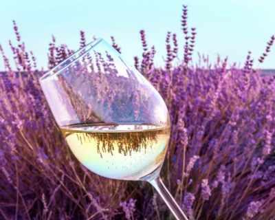 Какво не знаеш за бялото вино