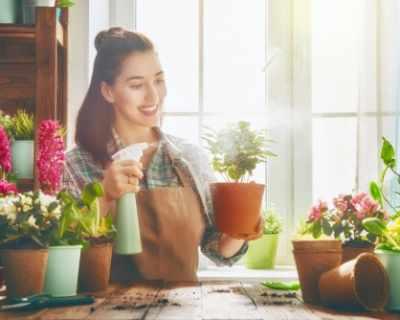 6 растения, които ще ви помогнат да се преборите със ...
