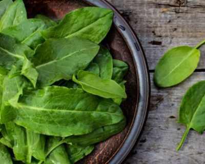 Киселец – листен зеленчук с много ползи