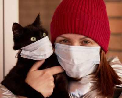 Белгиец зарази котето си с коронавирус