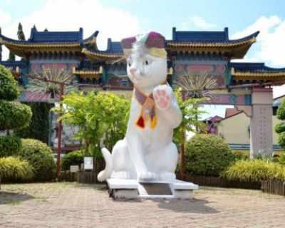 Кучинг – необикновеният град на котките