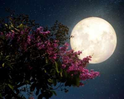 Любопитни факти за лунното затъмнение