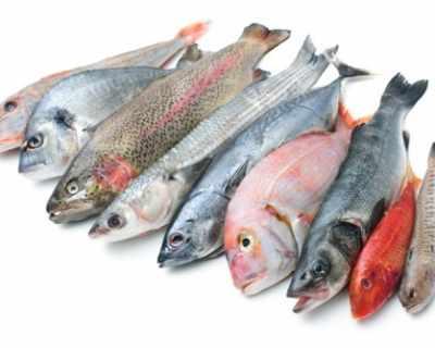 В североизточно Мексико заваляха… риби