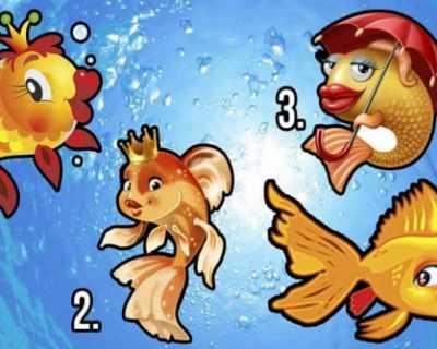 Тест: Открий какво предвещава за теб златната рибка