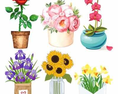 ТЕСТ: Какво издава за вас любимото ви цвете?